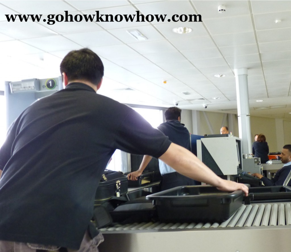 passenger security gohow
