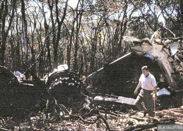 An unidentified official at the scene in the forest where the DC-6 came down killing the UN Secretary General and fourteen others. The sole survivor of the crash died in the hospital six days later.