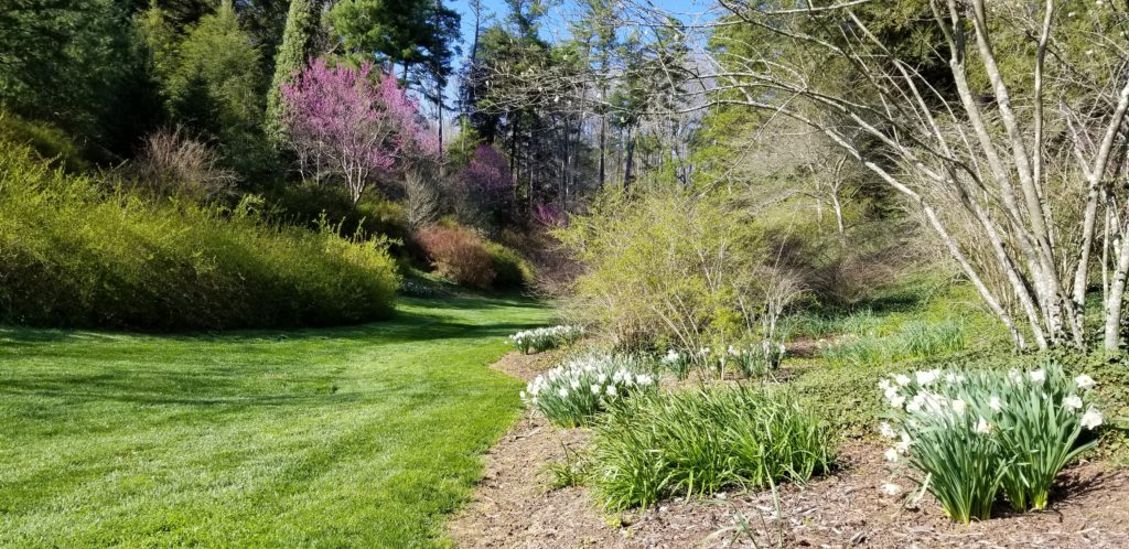 Spring Sights, Sounds and Smells, Coming Soon to a Garden Near You